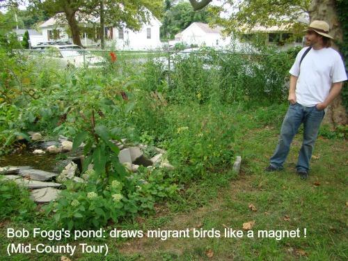 BobFogg pond-w-sig