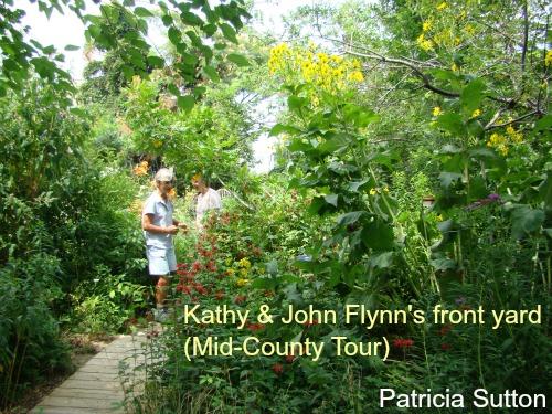 KathyFlynn GDN 2 w-sig.jpg