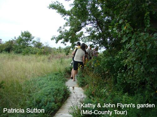 KathyFlynn w-sig.jpg