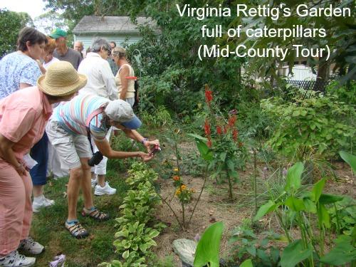 Virginia Rettig 2 -w-sig.jpg